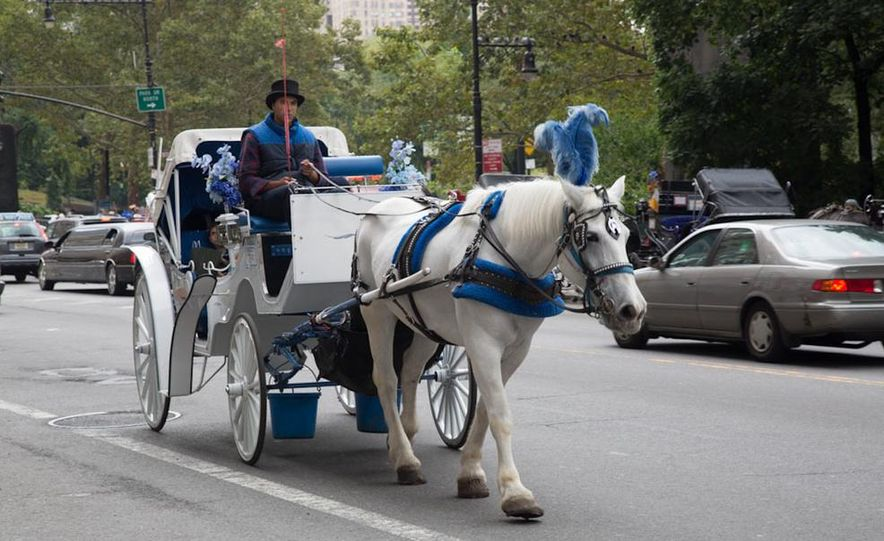 Can an Electric Car Really Replace Central Park's Horse-Drawn Carriages? - Slide 41