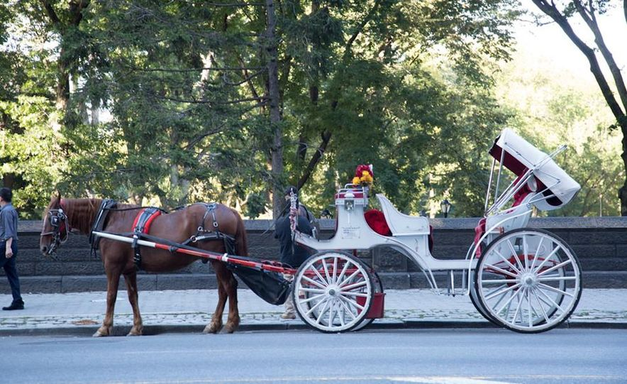 Can an Electric Car Really Replace Central Park's Horse-Drawn Carriages? - Slide 42
