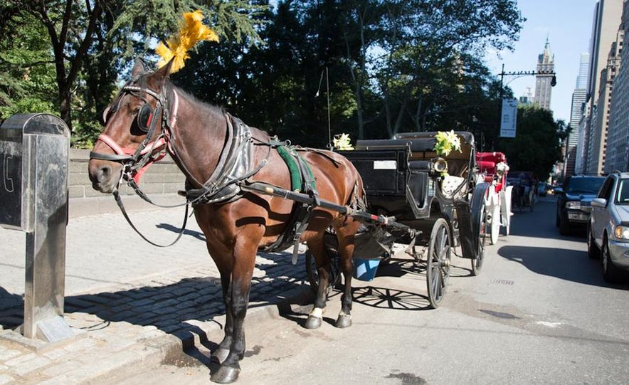 Can an Electric Car Really Replace Central Park's Horse-Drawn Carriages? - Slide 45