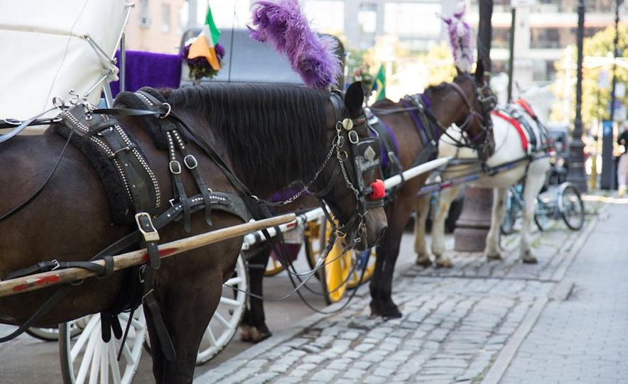 Can an Electric Car Really Replace Central Park's Horse-Drawn Carriages? - Slide 46
