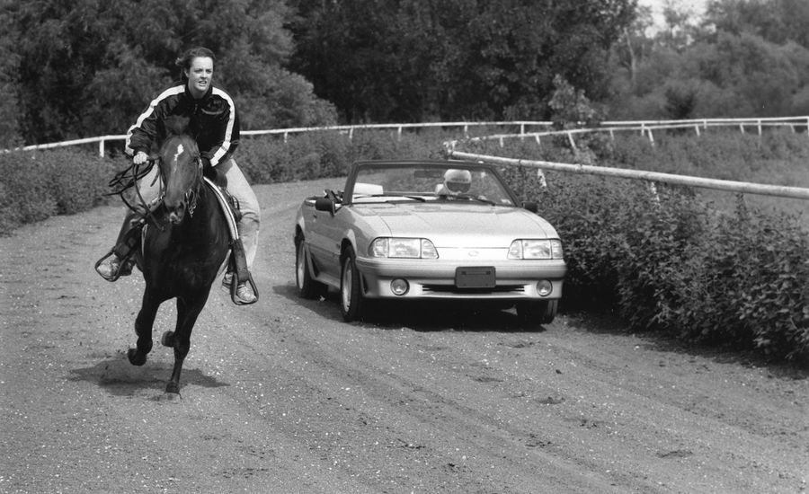 1991 Ford Mustang (Car) vs. Mustang (Horse)