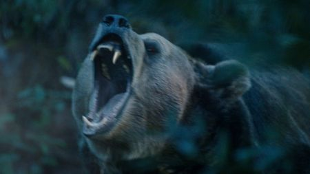 In Hyundai's Super Bowl Ads, the Elantra Protects from the Dangers of Bears, Famous Actors [Video]