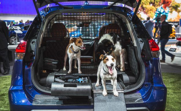 Nissan Brings Rogue Dogue to New York Auto Show | News | Car and Driver