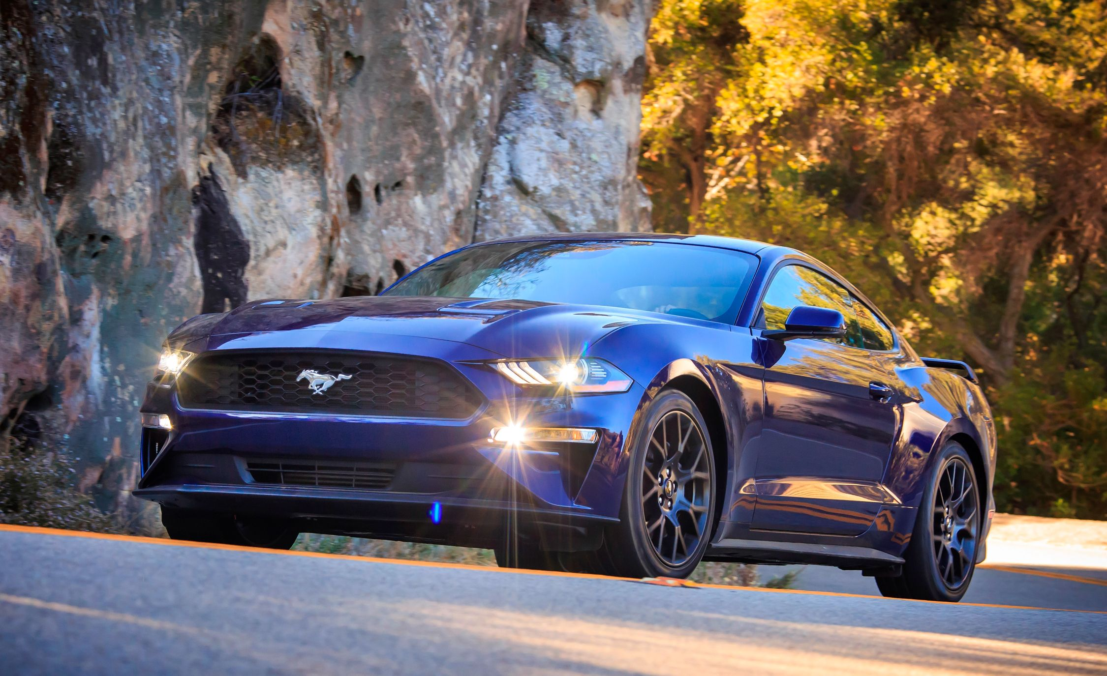Ford mustang reviews ford mustang price photos and specs car ford mustang reviews ford mustang price photos and specs car and driver sciox Choice Image