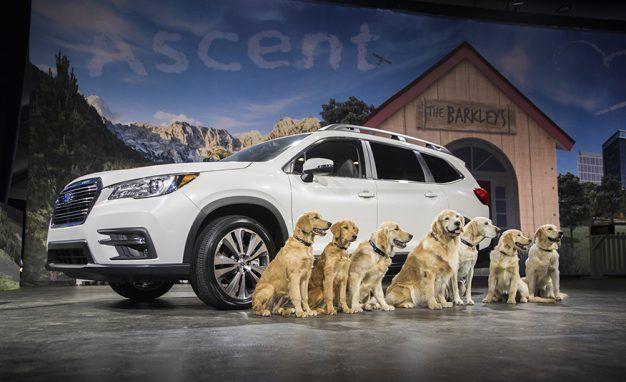 Golden Opportunity: 2019 Subaru Ascent Starts Just under $33,000