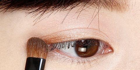 Brown, Skin, Eyelash, Eyebrow, Iris, Brush, Organ, Beauty, Black, Close-up,