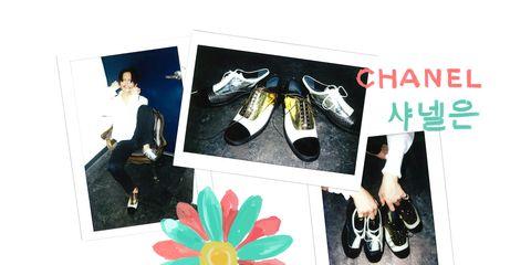 Petal, Teal, Turquoise, Aqua, Athletic shoe, Walking shoe, Creative arts, Outdoor shoe, Brand, Sacred lotus,
