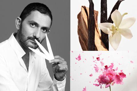Petal, Flower, Flowering plant, Photography, Facial hair, Moustache, Blossom, Artificial flower, Floral design, Creative arts,