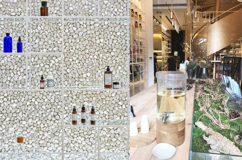 Interior design, Ceiling, Lobby, Houseplant, Herb, Mosaic, Tile,