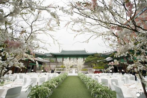 Spring, Flower, Building, Aisle, Tree, Plant, Architecture, Blossom, Cherry blossom, Ceremony,