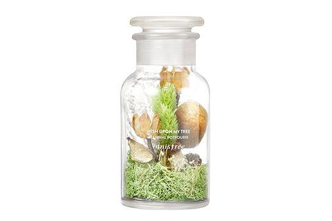 Grass, Plant, Bottle, Nepenthes, Glass, Aquarium decor, Herb,