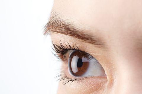 Brown, Skin, Eyelash, Eyebrow, Iris, Organ, Photography, Beauty, Close-up, Beige,