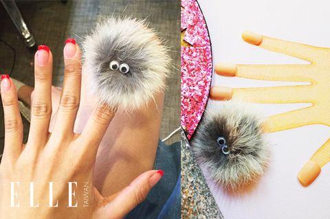 Finger, Skin, Nail, Iris, Kitchen utensil, Peach, Produce, Thumb, Bird, Domesticated hedgehog,