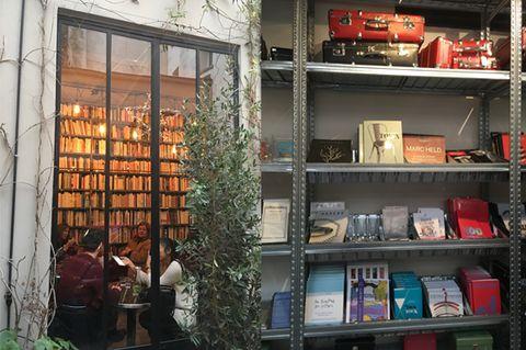 Shelf, Shelving, Flowerpot, Houseplant, Collection, Publication, Bookcase, Book, Cabinetry,