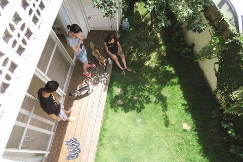 Human body, Black hair, House, Garden, Backyard, Yard, Lawn, Courtyard, Foot,