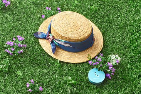 Grass, Petal, Headgear, Costume accessory, Fashion accessory, Purple, Lavender, Groundcover, Costume hat, Circle,