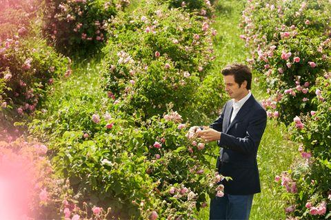 Shrub, Flower, Petal, Coat, Pink, Suit, Garden, People in nature, Blazer, Botany,