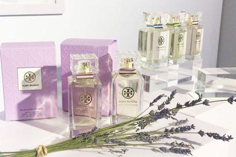 Perfume, Product, Flower, Cosmetics, Plant,