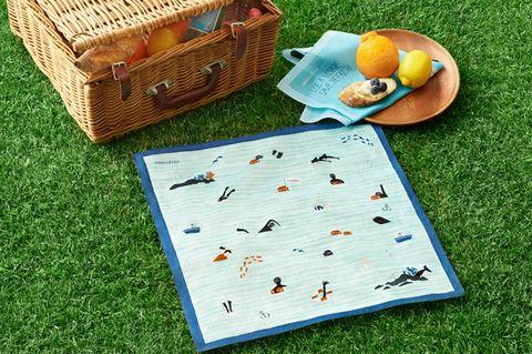 Citrus, Ingredient, Basket, Fruit, Lemon, Orange, Storage basket, Citric acid, Insect, Tangelo,