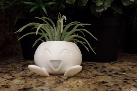 Flowerpot, Terrestrial plant, Still life photography, Houseplant, Vase, Pottery, Serveware, Toy, Perennial plant, Artifact,