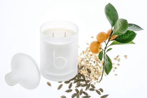 White, Flower, Plant, Candle, Cylinder, Dairy, Jasmine,
