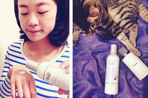 Skin, Plastic bottle, Carnivore, Small to medium-sized cats, Felidae, Whiskers, Beauty, Eyelash, Cat, Nail,
