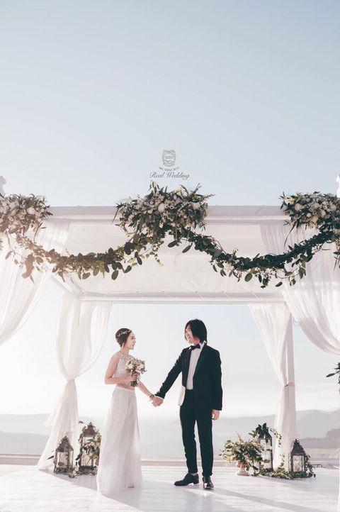 Clothing, Coat, Trousers, Dress, Bridal clothing, Petal, Photograph, Suit, Outerwear, Bride,
