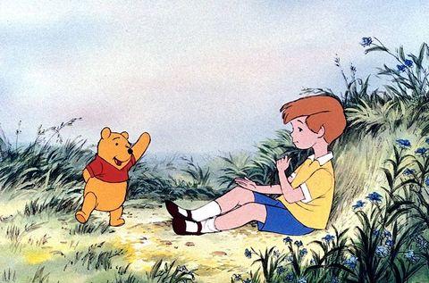 Animated cartoon, Cartoon, Red fox, Fox, Swift fox, Illustration, Grass, Animation, Wildlife, Canidae,