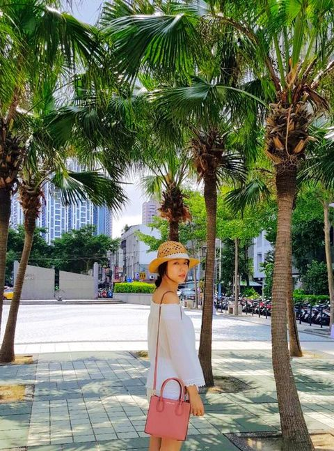 Tree, Hat, Arecales, Woody plant, Fashion accessory, Street fashion, Bag, Travel, Trunk, Sun hat,