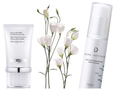 Product, White, Liquid, Petal, Flowering plant, Cosmetics, Cylinder, Pedicel, Skin care, Personal care,