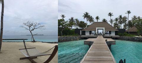 Property, Tree, Real estate, Resort, House, Arecales, Swimming pool, Aqua, Azure, Home,