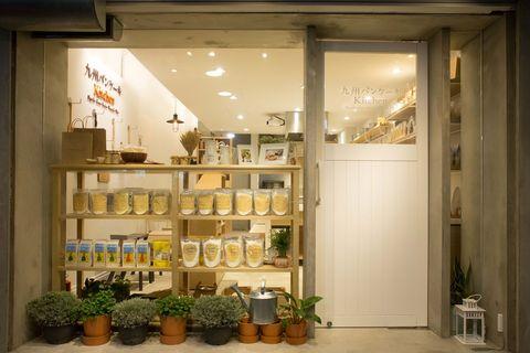Plant, Flowerpot, Shelving, Display case, Houseplant, Shelf, Display window, Collection, Retail,