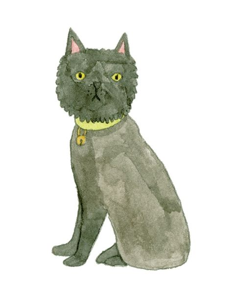 Organism, Terrestrial animal, Carnivore, Jaw, Felidae, Snout, Cat, Small to medium-sized cats, Animation, Grey,
