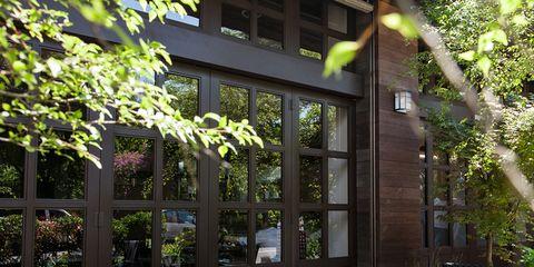 Glass, Fixture, Outdoor table, Garden, Shrub, Outdoor furniture, Shade, Flowerpot, Yard, Backyard,