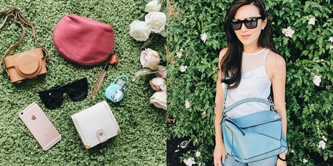 Eyewear, Vision care, Petal, Sunglasses, Bag, Beauty, Flowering plant, Rose order, Luggage and bags, Rose family,
