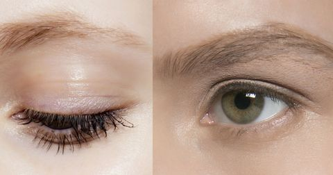 Brown, Skin, Eyelash, Eyebrow, Iris, Beauty, Amber, Organ, Colorfulness, Tints and shades,