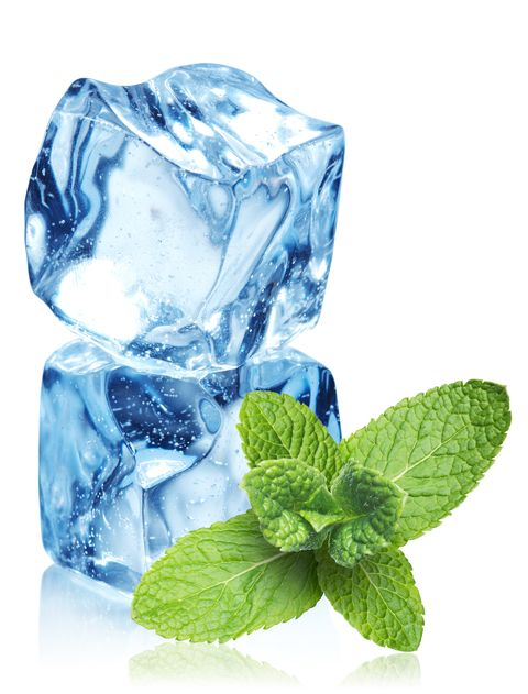 Leaf, Herb, Mint, Mint, Peppermint, Herbal, Still life photography, Spearmint, Fines herbes,