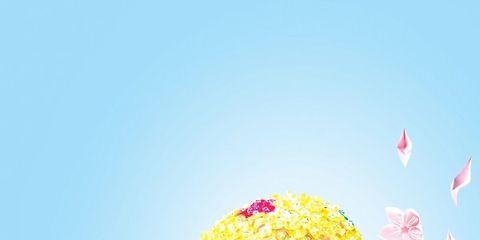 Pink, Petal, Art, Pattern, Creative arts, Illustration, Floral design, Graphic design, Wildflower, Pedicel,