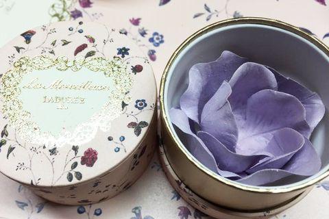 Serveware, Dishware, Petal, Purple, Lavender, Porcelain, Pink, Violet, Ceramic, Flowering plant,