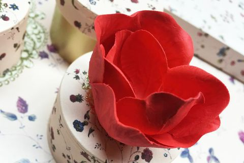 Serveware, Petal, Dishware, Red, Porcelain, Flower, Cup, Ceramic, Flowering plant, Carmine,