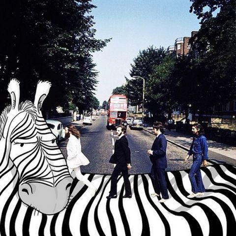 Zebra, Infrastructure, Street, Pedestrian crossing, Pedestrian, Travel, Thoroughfare, Zebra crossing, Parallel, Street fashion,