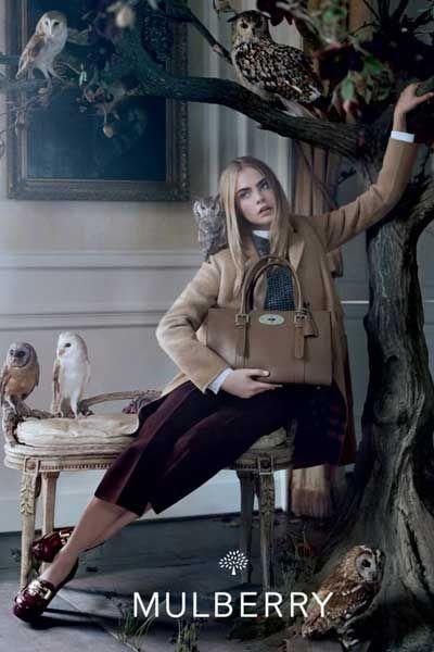 Vertebrate, Bird, Grey, Beak, Denim, Photography, Long hair, Twig, Natural material, Perching bird,