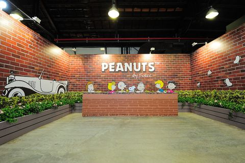 Lighting, Plant, Brick, Ceiling, Light fixture, Brickwork, Signage, Ceiling fixture,