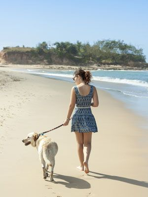 Human, Coastal and oceanic landforms, Tourism, Vertebrate, Mammal, Dog, Coast, Shore, Sand, Leisure,