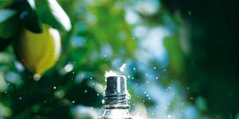 Liquid, Fluid, Bottle, Bottle cap, Glass bottle, Solution, Oil, Solvent,