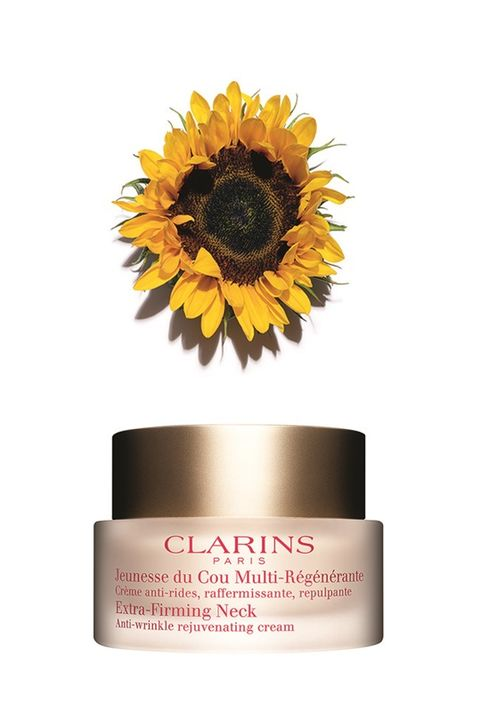 Yellow, Sunflower, Font, Beige, Peach, Still life photography, sunflower, Label, Cut flowers, Cylinder,