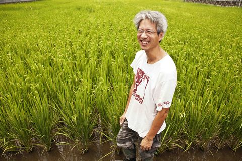 Smile, Happy, People in nature, Field, Wetland, Agriculture, Farm, Grass family, Flowering plant, Paddy field,