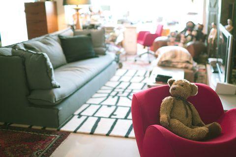 Interior design, Room, Living room, Floor, Stuffed toy, Flooring, Couch, Home, Furniture, Interior design,