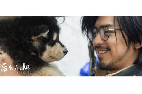 Eyewear, Glasses, Dog breed, Vision care, Cheek, Skin, Vertebrate, Dog, Carnivore, Textile,