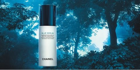 Nature, Blue, Natural environment, Branch, Liquid, Woody plant, Atmospheric phenomenon, Tints and shades, Sunlight, Cosmetics,